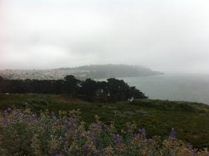 View pic